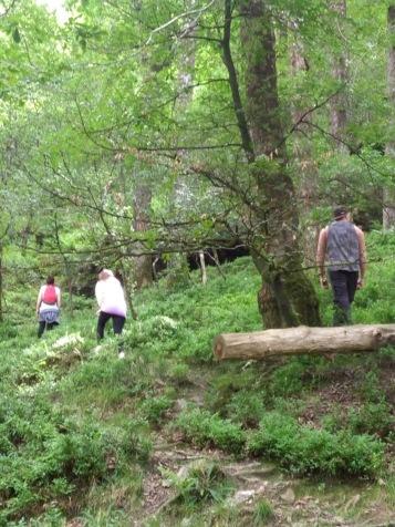 Glendalough 17 2