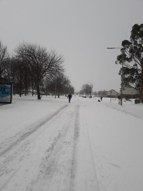 snow 4